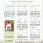 """Artikelabbildung aus dem Fachmagazin für Tierberufe """"Tierisch ausgeglichen"""", erschienen im April 2020"""